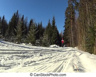 Cross country skiing man passing by - Nordic skiing man...
