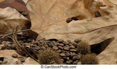 Roasted Coffee and Dry Leaves