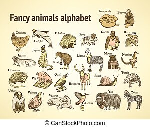 Sketch fancy animals alphabet  in vintage style, vector