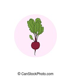 Icon beet root vegetable - Icon beetroot , icon root...