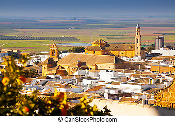 General view of andalucian town.  Osuna, Spain