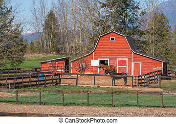 Red Horse barn with Two Horses - Red Barn and Paddock with...