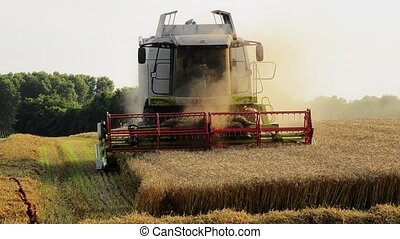 agriculture, combine harvester