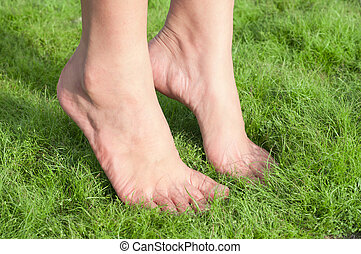 Woman feet over green grass - Woman feet tiptoe over green...