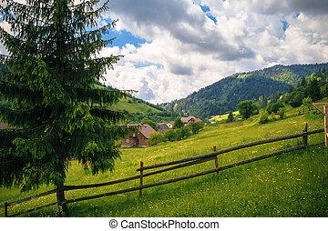 rural beauty in the Carpathians