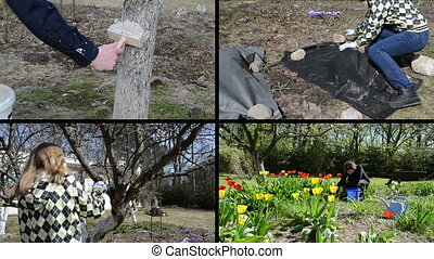 spring works collage - gardener whitening tree trunk Fruiter...