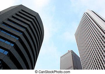 Tokyo\'s Shinjuku Skyscrapers