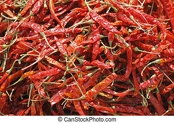 chili pepper, paprika, Capsicum annuum - chili pepper,...