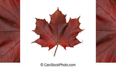 Canadian Flag - The Canadian flag made with a real maple...