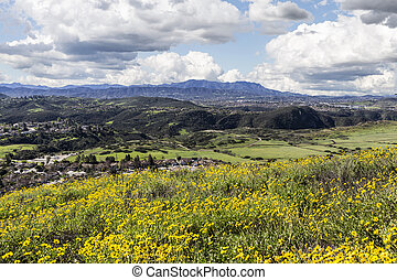 California Meadows - Suburban Thousand Oaks near Los Angeles...