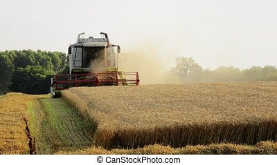 agriculture, combine harvester - farming, agriculture,...