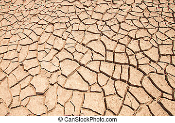 cracked earth.