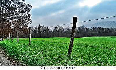 Roadside Rural Fence - An image of a roadside rural fence