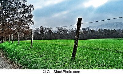 Roadside Rural Fence - An image of a roadside rural fence.
