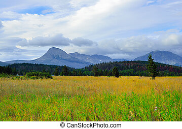 beautiful landscape view of the Glacier National Park in summer