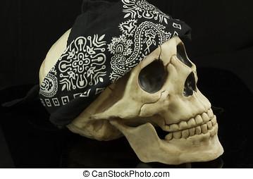 Pirate Skull - Pirate skull with bandana