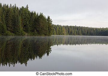 Pog Lake Tree Line - The reflection of evergreen trees in...