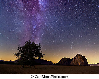 Lonely tree and milky way in summer, Dolomites,Italy
