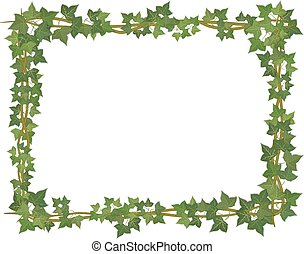 Ivy square frame - square decorative frame of ivy branches