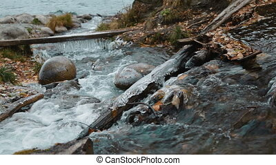 Icicles in the stream - Icicles in the creek of Altay...