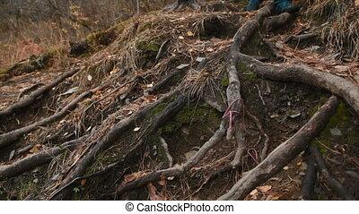 Man walking along the leaf littered forest floor.