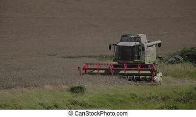 combine in summer - Bright yellow combine in summer at...