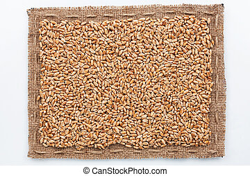 Frame of burlap and wheat grain, lying on a white background