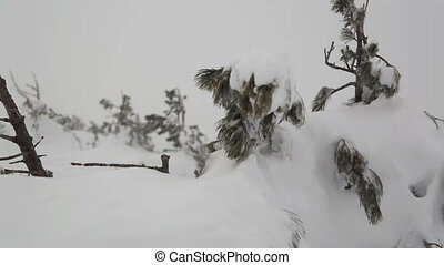 Heavy snow after snowstorm on mountain top
