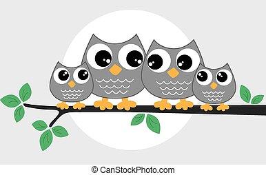 Um, doce, pequeno, coruja, família,