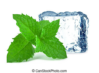cube ice and mint isolated on white