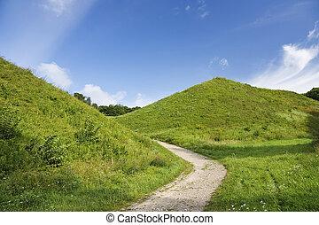 green hill, summer