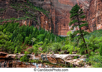 zion national park emeralds pool with sandstone cliffs and...