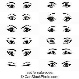 set of views of a female eye