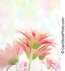 Gerbera Watercolor - Digital Painting Of Gerbera Flowers