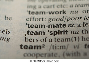 Definition of the word teammate