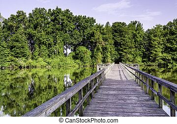 水, 橋, アラバマ, フィート, 森林