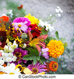 Colorful flowers for your design