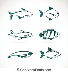 Vector group of fish on white background