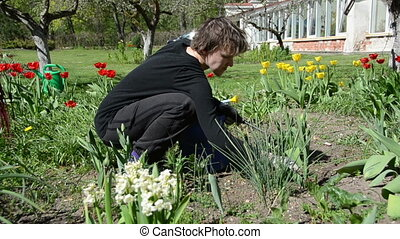 girl work flower bed - Panorama of gardener girl work...