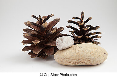 bumps and stones - composition of cones and stones on the...