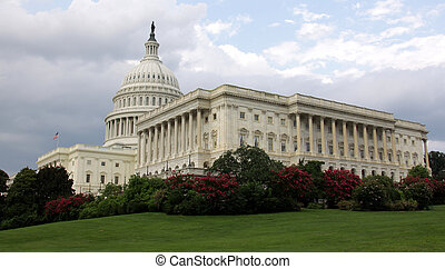 Side of the Capitol Building - The side of the United States...