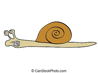 vector angry snail - Vector illustration of the snail -...