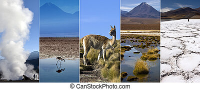 Atacama Desert - Chile - South America - The Atacama Desert...
