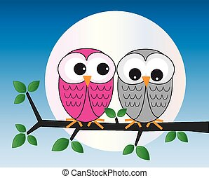 two sweet owl sitting on a branch