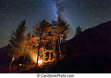 Holidays in the woods near the fire in the night star sky