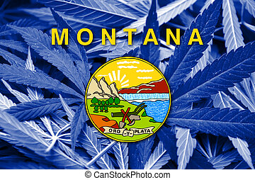 Montana State Flag on cannabis background. Drug policy....