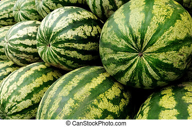watermelon - heap of ripe watermelons