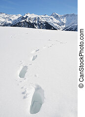 Footprints in the deep snow Switzerland
