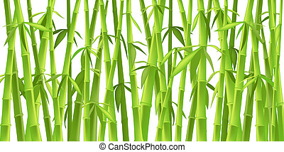 chinese bamboo trees - design of chinese bamboo trees,...