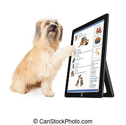 Dog Using Social Media on Tablet Device - A large dog...